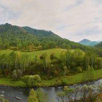 река Сёма :: Николай Мальцев