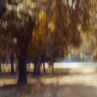 Осенняя :: Yuriy Puzhalin