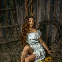 Девушка на сеновале :: Андрей Володин