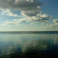 Фиский залив днем. (Сентябрь 2016 г., п. Репино.). :: Светлана Калмыкова