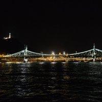 Ночной Дунай :: mihail