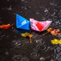 Коротко о погоде в Орше. Погода ОСЕНЬ! :: Марина Романова