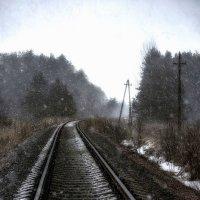 Снежный март :: Алексей Румянцев