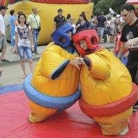 ну настоящие сумо... :: татьяна