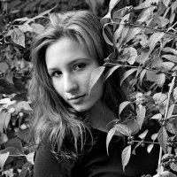 Осень. :: Дмитрий Воронин