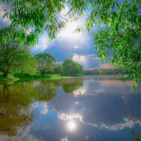 Лето на Борисовских прудах :: Zifa Dimitrieva