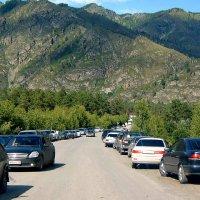 Догога на Чемал, Горный Алтай :: Лариса Димитрова