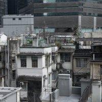 Гонконг. Оттенки серого :: Sofia Rakitskaia