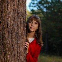 Из-за дерева :: Роман Васенин