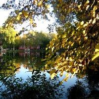 Осенью на озере :: Елена Семигина