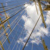 Высоко, дальше только небо! :: Marina Talberga