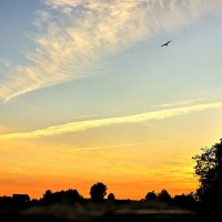 Вечернее небо :: Валерий Талашов
