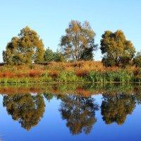 Отражение-то красивее, чем реальность. :: Иван