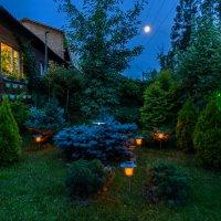 Ночные фонарики.. :: Виктор Льготин