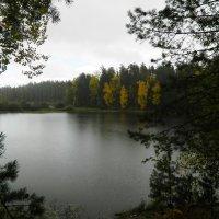 Осень...* :: Вячеслав