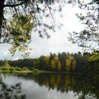 *Осень...* :: Вячеслав