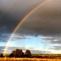 Вечерняя радуга :: Елена Байдакова