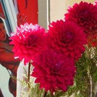 Цветы для женщины :: Наталья Джикидзе (Берёзина)