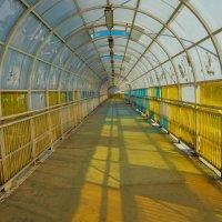 Мост на дорогой :: Света Кондрашова