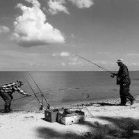 Ловись, рыбка :: Анатолий Шулков
