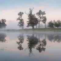 утро на реке Осовец :: Михаил Корнилов