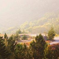 Национальный Баянаульский парк. Казахстан. :: TATYANA PODYMA