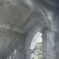 Набросок в каплях дождевых..... :: Tatiana Markova