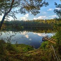 Лесное озерцо :: Фёдор. Лашков