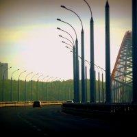 Бугринский мост,,, :: Ольга Кондратова