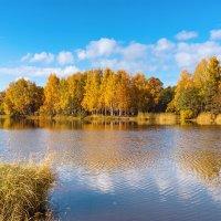 Осенний пруд :: Виталий