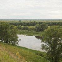 Река Окка :: Татьяна Суетина