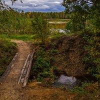 Мост через ручей :: Андрей Дворников