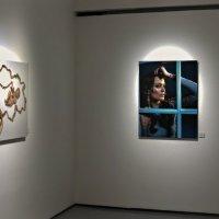 Выставка фоторабот Антонио Бандераса. :: Сергей Басов