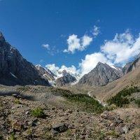 Северо-Чуйский хребет. Актру :: Виктор Четошников