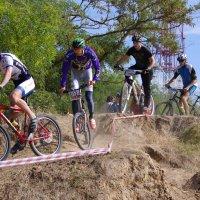 Park Race 2016 XC Херсон :: Алексей Климов