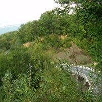 Дороги Адыгеи :: Надежда