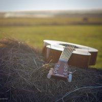 Гитара :: Андрей Мирошниченко