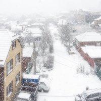 Снегопад :: Александр Гапоненко