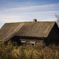 Низкий дом мой давно сутулился.. старый пес мой давно издох :: Александр
