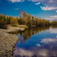 Отражение! :: Ирина Антоновна