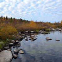 На речке,на речке,на том бережочке... :: Ольга