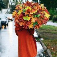 Осень шагает вперед.... :: Марина Романова