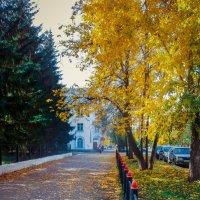 Осенняя улица :: Вячеслав Баширов