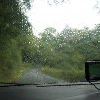 Огорчила погода... :: Natalia Harries