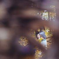 в лесу :: Анна Вязьмина-Кирилюк