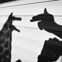 Собаки дикие . :: Artem72 Ilin