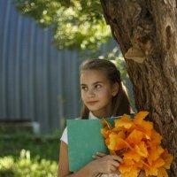 Осень-время ярких мыслей! :: Анна Толмачева