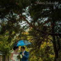 Свадебная прогулка :: Валерий Саломатин