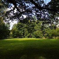 В старом парке :: Александр