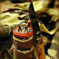 Оборона высоты Опинель :: Кай-8 (Ярослав) Забелин